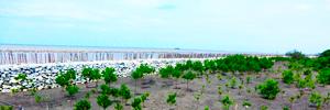開発途上国の沿岸環境のイメージ